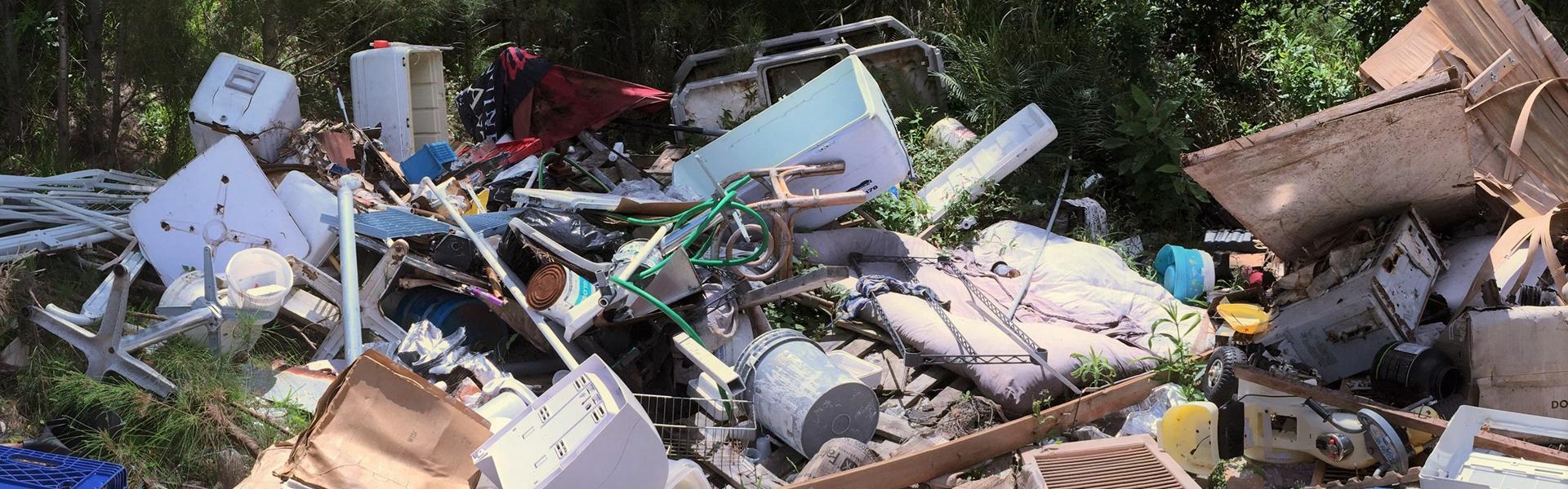 Illegal Dumping Bermuda